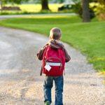 A fakultatív magyar nyelvoktatás helyzete Romániában