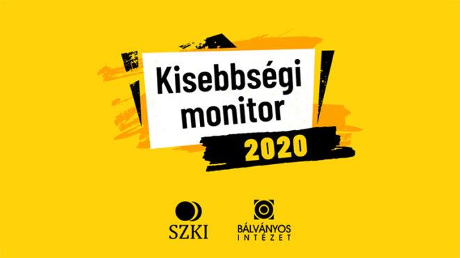 Minority Monitor 2020